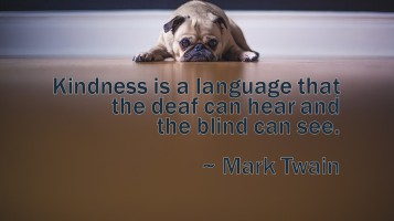 deaf can hear kindness
